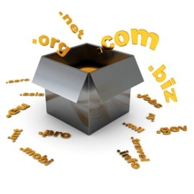 multiple domain names