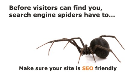 seo friendly website